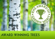 Award Winning Trees