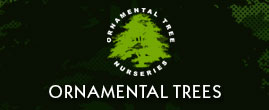 Ornamental Trees Ltd
